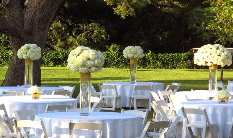 Choosing Wedding Décor